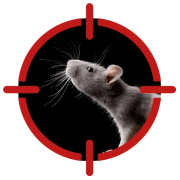 Image of a rodent