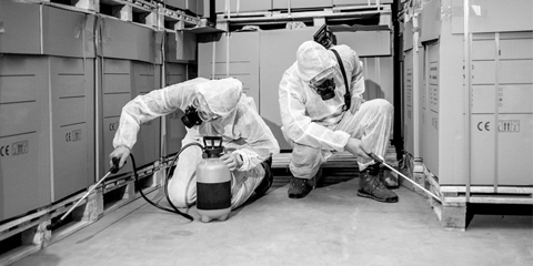 Black and white image of pest control technicians in a factory