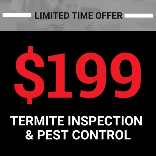 $199 termite inspection & pest control promo banner